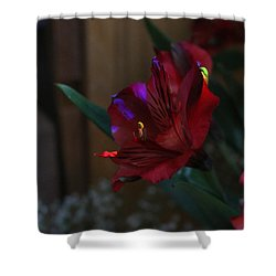 Shower Curtain featuring the photograph Waiting For You by Marie Neder