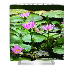 Shower Curtain featuring the photograph Water Lilies by Anthony Jones