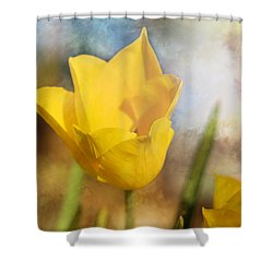 Water Lily Tulip Flower Shower Curtain