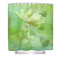 Waterlily Shower Curtain by Carolyn Dalessandro