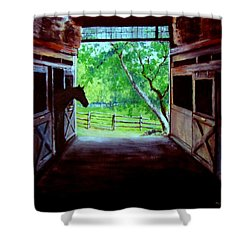 Water's Edge Farm Shower Curtain by Jack Skinner