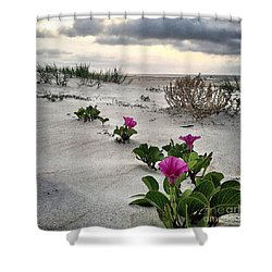 Weekend Glories 6.18.16 Shower Curtain