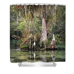 Weeki Wachee River Shower Curtain