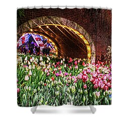 Welcoming Tulips Shower Curtain