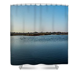 Wetlands Panorama  Shower Curtain
