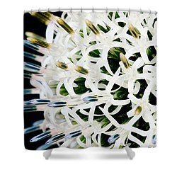 White Alium Onion Flower Shower Curtain by Colin Rayner