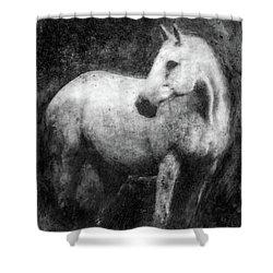 White Horse Portrait Shower Curtain