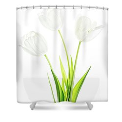 Shower Curtain featuring the photograph White On White by Rebecca Cozart