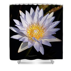 Shower Curtain featuring the photograph White Water Lily by Steve Stuller