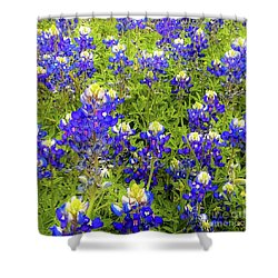 Wild Bluebonnets Blooming Shower Curtain