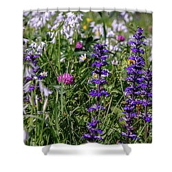 Shower Curtain featuring the photograph Wild Flowers by Patricia Hofmeester