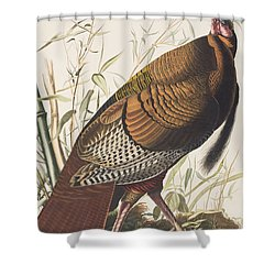 Wild Turkey Shower Curtain by John James Audubon