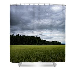Willamette Wheat Shower Curtain