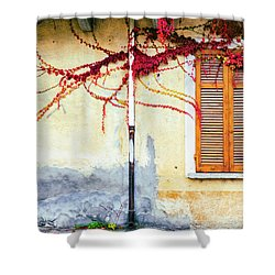 Shower Curtain featuring the photograph Window And Red Vine by Silvia Ganora