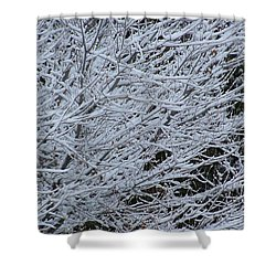 Winter At Dusk Shower Curtain