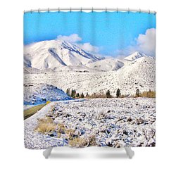 Winter Driving Shower Curtain