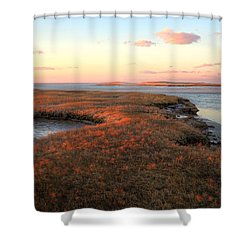 Winter Gold Shower Curtain by Michelle Wiarda