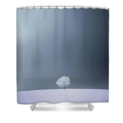 Shower Curtain featuring the photograph Winter Tree by Bess Hamiti