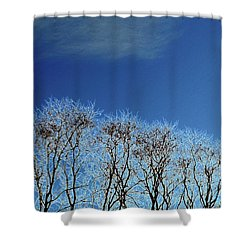 Winter Trees And Sky 3  Shower Curtain by Lyle Crump