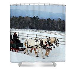 Winter Wonderland Shower Curtain by James Kirkikis