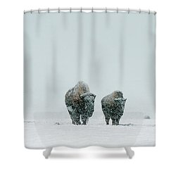 Shower Curtain featuring the photograph Winter's Burden II by Sandra Bronstein
