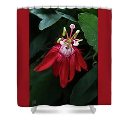 With Passion Shower Curtain by Geri Glavis