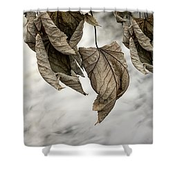 Withered Leaves Shower Curtain