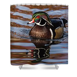 Shower Curtain featuring the photograph Wood Duck Reflections by Stephen Johnson