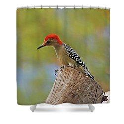 Shower Curtain featuring the digital art 1- Woodpecker by Joseph Keane