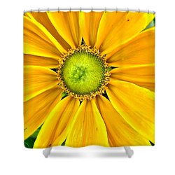 Yellow Daisy Shower Curtain
