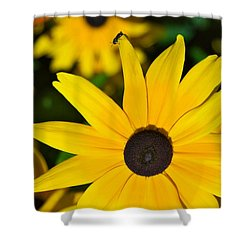 Yellow Flowers Shower Curtain by Bob Pardue