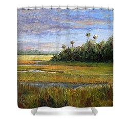 Yellow Marsh Shower Curtain by Beth Maddox