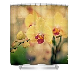 Shower Curtain featuring the photograph Yellow Orchids by Ana V Ramirez