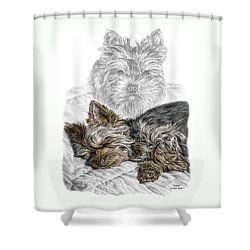 Shower Curtain featuring the drawing Yorkie - Yorkshire Terrier Dog Print by Kelli Swan