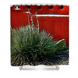 Yucca And Adobe Shower Curtain
