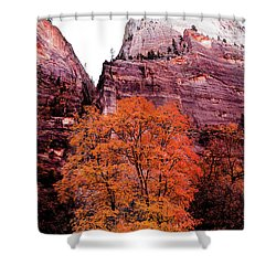 Shower Curtain featuring the photograph Zion National Park by Norman Hall