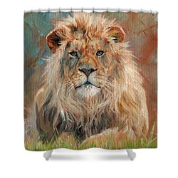 Shower Curtain featuring the painting Lion by David Stribbling