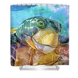 10730 Mr Tortoise Shower Curtain