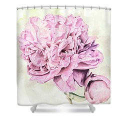 10861 Spring Peony Shower Curtain by Pamela Williams