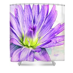 10889 Purple Lily Shower Curtain