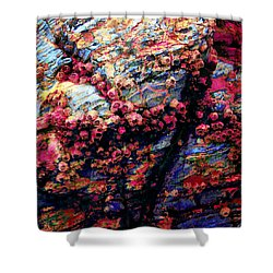 109 Shower Curtain by Timothy Bulone
