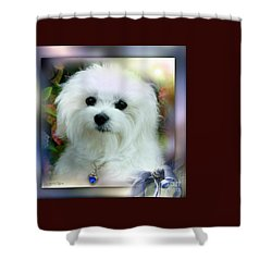 Hermes The Maltese Shower Curtain