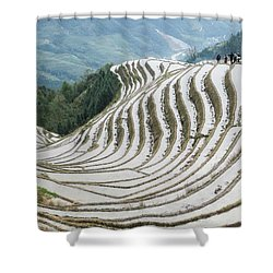 Terrace Fields Scenery In Spring Shower Curtain