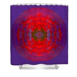 1217 -   Mandala Red 2017 Shower Curtain