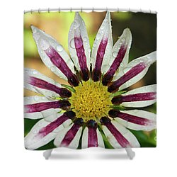 Nice Flower Shower Curtain by Elvira Ladocki