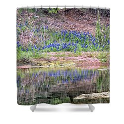 Texas Bluebonnets 8 Shower Curtain