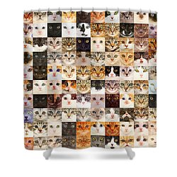 140 Random Cats Shower Curtain