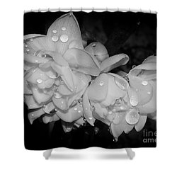 Shower Curtain featuring the photograph Flowers by Elvira Ladocki