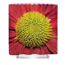 Red Flower Shower Curtain by Elvira Ladocki