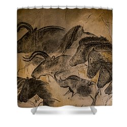 Chauvet Shower Curtain